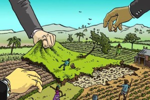2000 Kanals Of Land Encroached; Illegal Constructions Come Up In Sgr