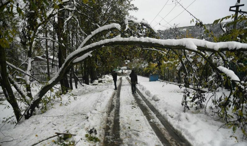 Govt Notifies Nov-Dec Snowfall As State Specific Natural Disaster