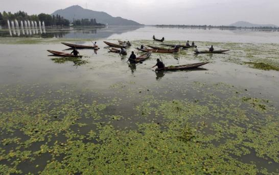 Post 370 Dal Craves for Attention As Efforts to Conserve Lake are Halted