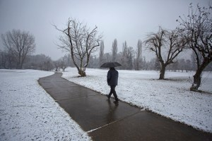 Kashmir Valley Receives Fresh Spell Of Snowfall