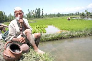 COVID-19: Why Are Kashmir's Elderly More At Risk?