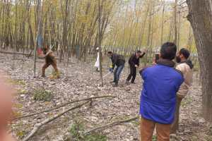 HC Stays Cutting Of Russian Poplar Trees: Report