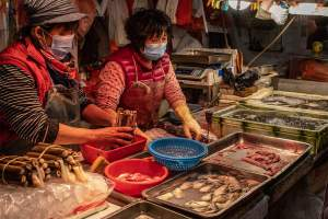 Wet Markets Important Risk Factor For Disease Spread: UNBody