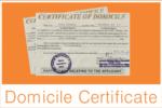J&K Govt Issues 18.52 Lakh Domicile Certificates