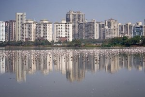 Indian House Prices To Fall For First Time In At Least A Decade: Poll