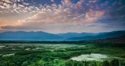 Rampant Pollution In Wular Lake Declines 'Nadru' Production