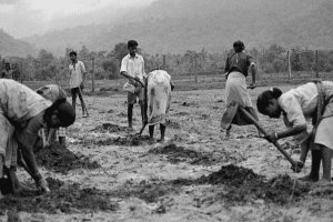 India's 1991 Moment for Agriculture Sector — Again?