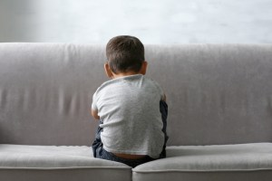 Specific Brain Circuit Damaged By Social Isolation During Childhood