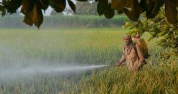 Loan Moratorium: Agri Loans Not Eligible For Interest-On-Interest Waiver