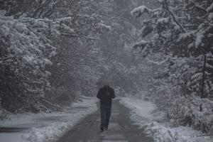First Major Snowfall Cuts Off Kashmir Valley