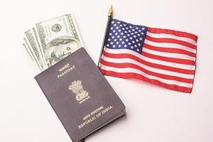 The Indian-American Survey