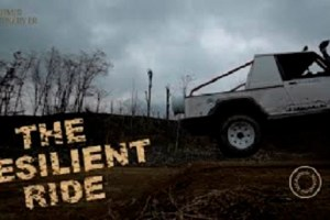 The Resilient Ride