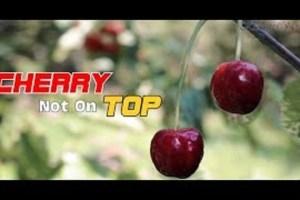 Cherry Not On Top