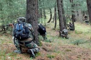 Jaish Chief's Aide Among 2 Killed In Dachigam Gunfight