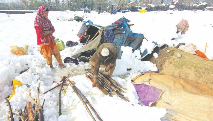 Heavy snowfall leaves 7 dead, massive damage to power infra, trees