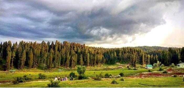 Tourism Deptt holds camp at Yousmarg