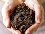 Organic matter is to soil what blood is to us