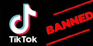 GoI bans 59 apps including China's TikTok, SHAREit