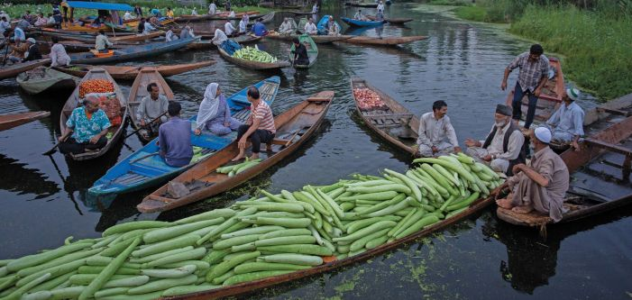 Vegetable suppliers and vendors at the floating vegetable market in Dal Lake