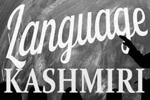 To lose a language