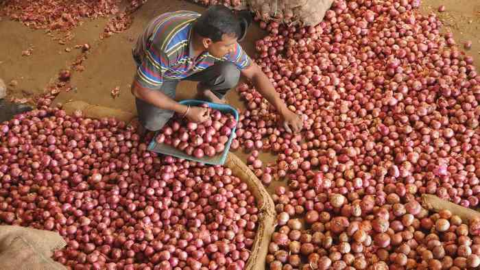 7,000 tonnes onion already imported, 25,000 tonnes likely to arrive before Diwali: Goyal