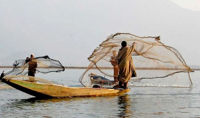 On World Fisheries Day, a Dive into the Aquaculture of J&K