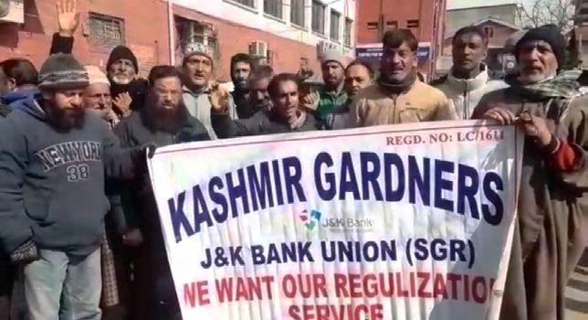 Gardeners working with JK Bank protest, demand regularisation, wages