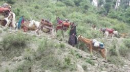 Not an ideal start to Forest Rights Act in J&K
