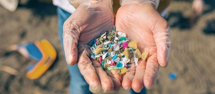 Researchers develop model to indicate accumulation of microplastics in human body