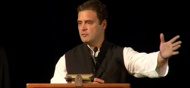 Employment is dignity, for how long will the govt 'deny' it to people: Rahul