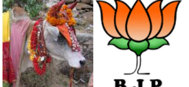 BJP manifesto: free distribution of cows to 1 lakh people every year