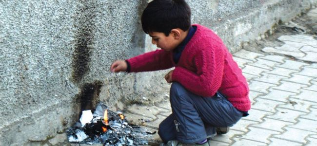 Cold tightens grip on most parts of J&K, Ladakh
