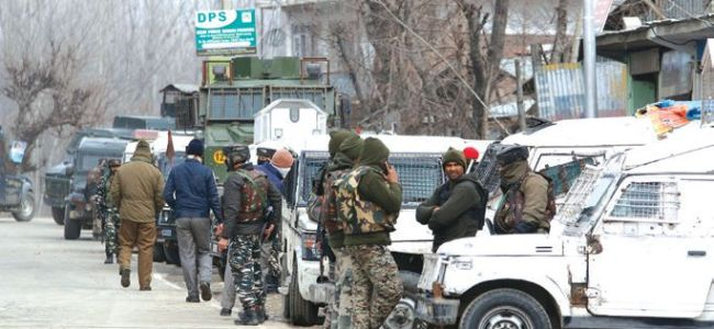 Tral encounter: One militant killed, ops continues