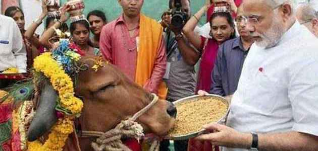 'Gau Mata' is an important element of India's tradition and culture: PM Modi