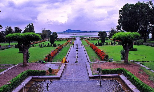 Mughal Gardens thrown open for public