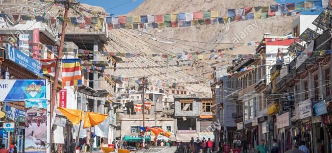 Ladakh declares black-necked crane as its state bird, snow leopard as state animal