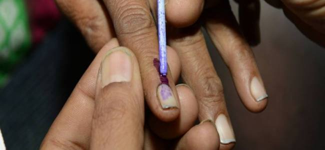 Pak elections: PTI emerges victorious