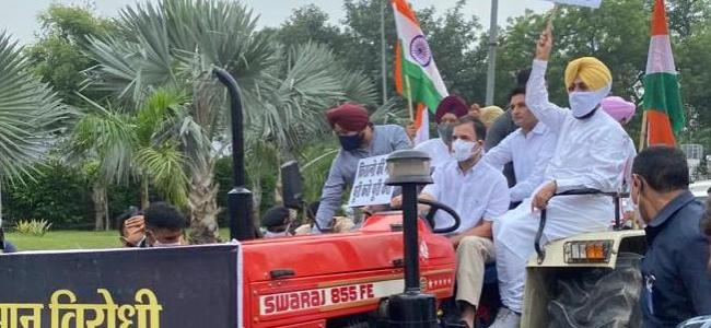 Rahul Gandhi drives tractor to Parliament to protest against farm laws