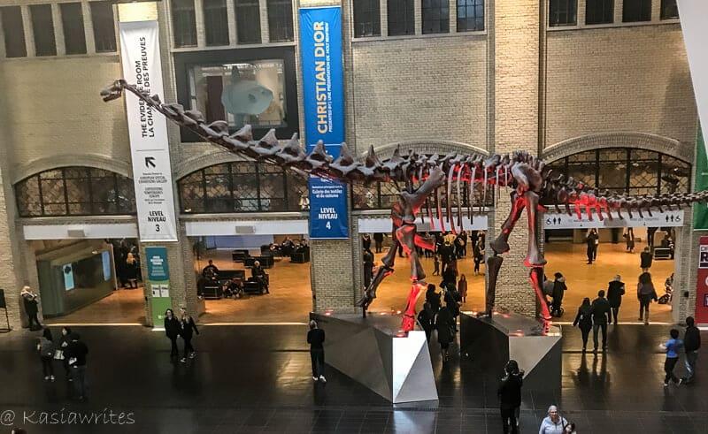 The ROM: Toronto's Royal Ontario Museum | kasiawrites cultural travel