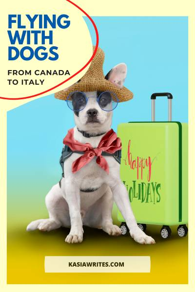 Flying with pets to Italy: important steps you need | kasiawrites cultural travel