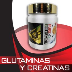 Glutaminas y creatinas