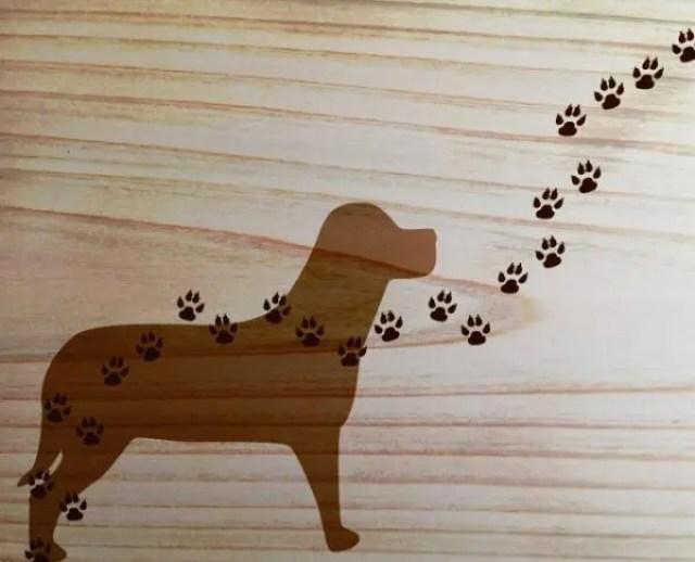 小型犬でも、大型犬でも、フローリングにダメージを与えます