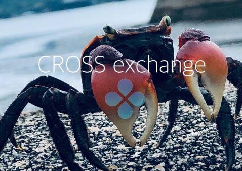 CrossExchange、9/10の日報 国内で新たな仮想通貨規制?