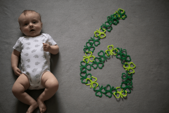 Six Month Baby Update
