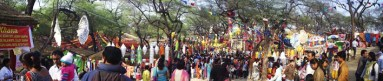 Sea of people at the annual crafts fair at Surajkund