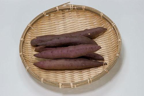 京丹後の砂丘芋