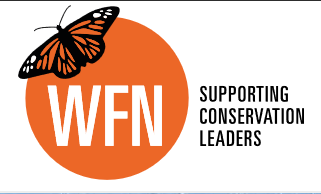 9 WFN logo