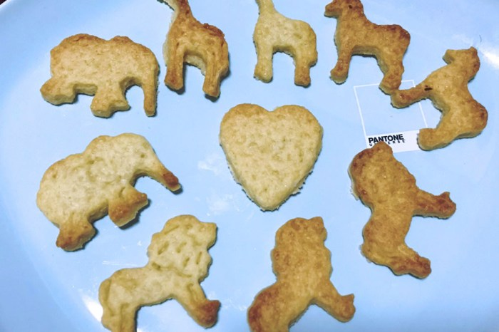 聖誕動物大遷徙: 超簡單餅乾  DIY