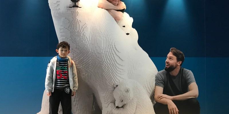 超越人類的美感極限 | Sean Kenney's 樂高大動物奇蹟 展覽必看重點