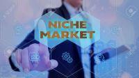 Niche Market: Pengertian Ceruk Pasar dan Contohnya
